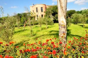 A garden outside Riad Hamdani