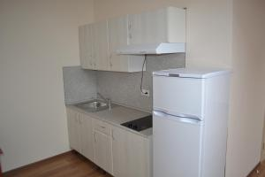 A kitchen or kitchenette at Guest house Apart-Ruza