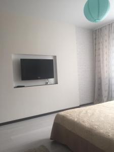 Телевизор и/или развлекательный центр в Apartments on Vladimira Nevskogo