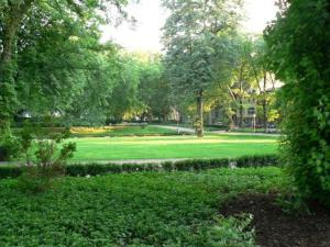 A garden outside Stadt-Gut-Hotel Zum Rathaus