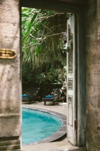 Piscine de l'établissement Honeymoon Guesthouse ou située à proximité
