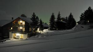 Chalet Goldblick v zime