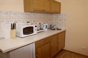 Кухня или мини-кухня в Griboedova 15-1
