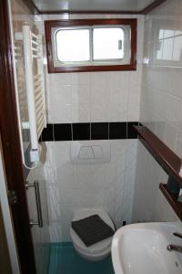 Salle de bains dans l'établissement Hotelboat Fiep