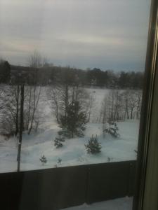 Mini Hotel Ozero зимой