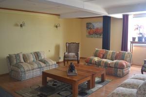 Zona de estar de Hotel Saltos del Paine