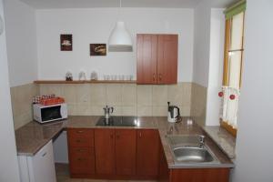 Kuchnia lub aneks kuchenny w obiekcie Apartament DOMINO