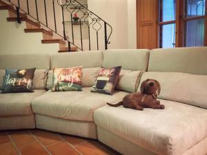 Cama o camas de una habitación en Casa Rural El Riberer