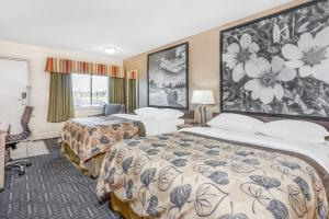 A bed or beds in a room at Super 8 by Wyndham Stettler
