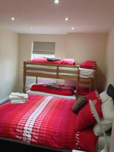 A bunk bed or bunk beds in a room at Airport Tavern Accommodation