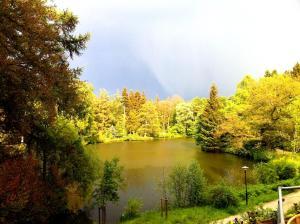 Ein Blick auf einen See in der Nähe des Hotels