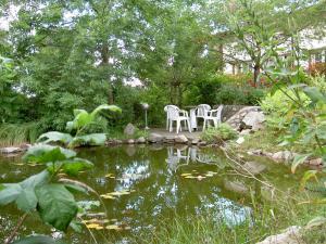 Сад в Hotel Gesellschaftshaus