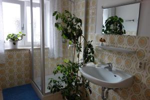 Ein Badezimmer in der Unterkunft Gästezimmer Nigglhof