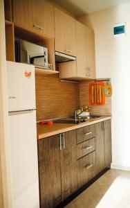 Кухня или мини-кухня в Olensflat on Lysaya Gora