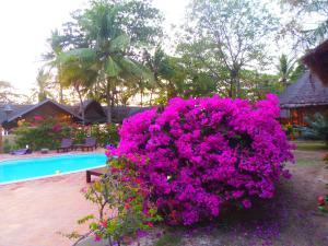 The swimming pool at or close to Koh Jum Lodge