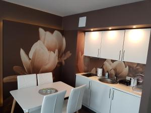 Kuchnia lub aneks kuchenny w obiekcie Apartamenty w Hotelu DIVA