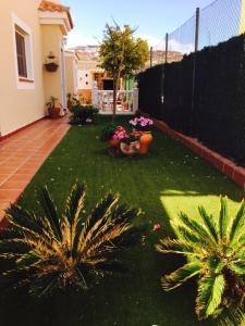 A garden outside Casa Paraiso