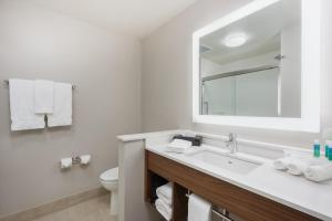 A bathroom at Holiday Inn Express & Suites West Plains Southwest, an IHG Hotel