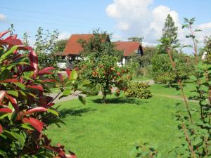 Ein Garten an der Unterkunft Ferienhaus Wigwam im Feriendorf Al