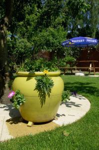 A garden outside Traquair Arms Hotel
