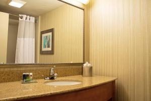 A bathroom at Radisson Hotel & Conference Center Coralville - Iowa City
