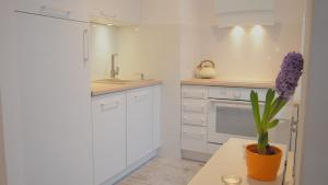 Kuchnia lub aneks kuchenny w obiekcie Svoboda Apartament