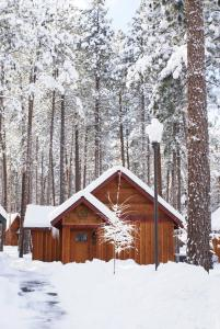 FivePine Lodge during the winter