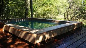 The swimming pool at or near Lion Tree Bush Lodge