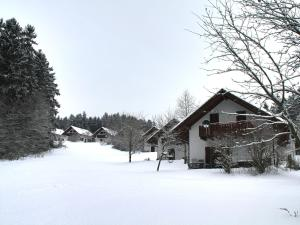 Stunning holiday home in Seepark Kirchheim with Garden during the winter