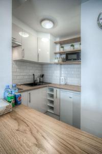 Kuchnia lub aneks kuchenny w obiekcie Studio Anielewicza