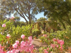 A garden outside Le Bastidon Saint-Michel