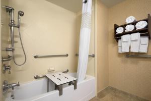 A bathroom at Hampton Inn & Suites Williamsburg-Central