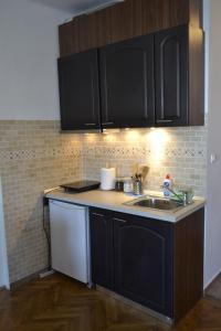 A kitchen or kitchenette at Studio Brasov