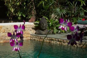 The swimming pool at or close to Taman Rahasia Tropical Sanctuary and Spa