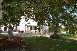 A garden outside La Villa Champagne Ployez-Jacquemart