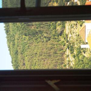 Uma vista geral da casa de hóspedes
