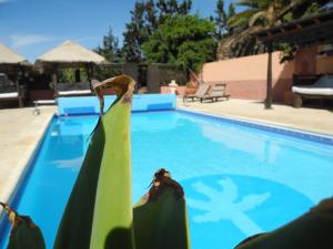 Het zwembad bij of vlak bij Casa El Morro