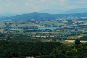 A bird's-eye view of Pensione Andrea