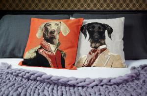 Haustiere von Gästen der Unterkunft Le Boutik Hotel