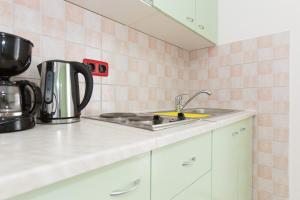 A kitchen or kitchenette at Apartments Larma