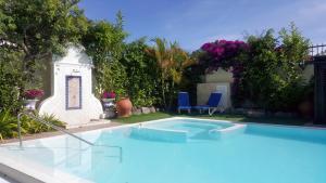 Het zwembad bij of vlak bij VIP Apartamentos Nogal- Adults Only
