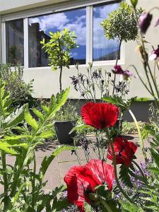 Een tuin van Stadtoase Koblenz