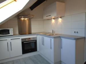 Cuisine ou kitchenette dans l'établissement Appartement BellesRives