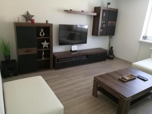 Televízia a/alebo spoločenská miestnosť v ubytovaní Apartman Prievidza-Bojnice