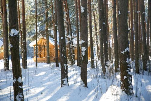 Княжья Речка база отдыха зимой