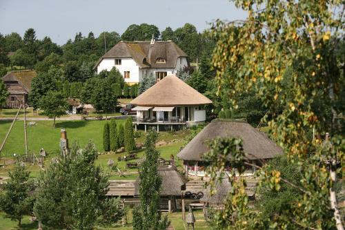 A bird's-eye view of Vienkiemis