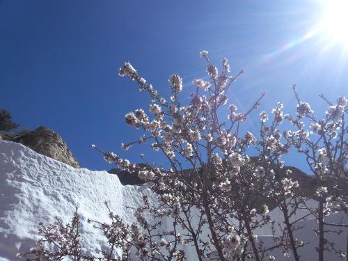 Casa Cueva Guadix en invierno