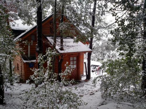 Calen-Hue durante el invierno