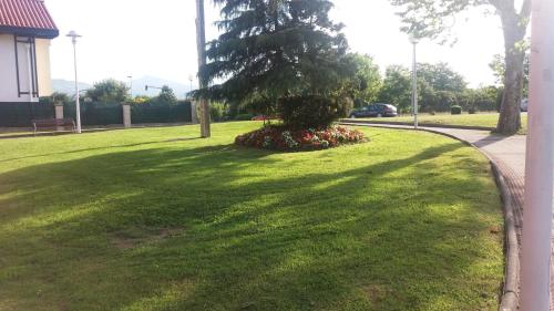 A garden outside Apartamento Loiu