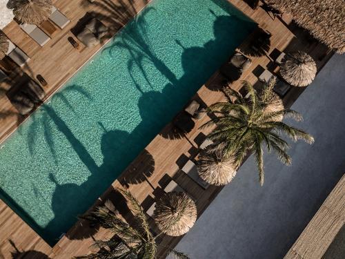 Vue sur la piscine de l'établissement OKU Kos ou sur une piscine à proximité